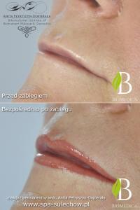 makijaz permanentny usta zielona gora
